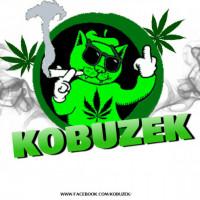 Zobacz profil Kobuzek na cmp3.eu